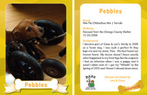 Pebbles – Therapy Dog Trading Card