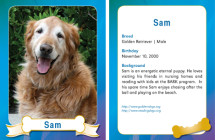 Sam – Therapy Dog Trading Card