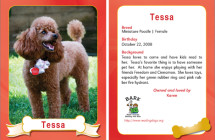Tessa – Therapy Dog Trading Card