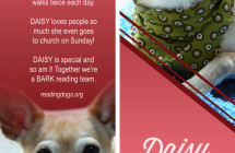 Daisy – Therapy Dog Bookmark