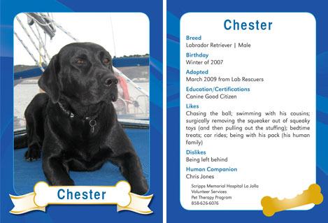 Custom Dog Trading Card