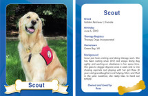 Scout – Therapy Dog Trading Card