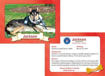 Dog Trading Cards